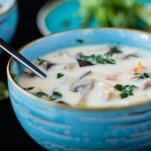 closeup sideview of thai ginger coconut soup