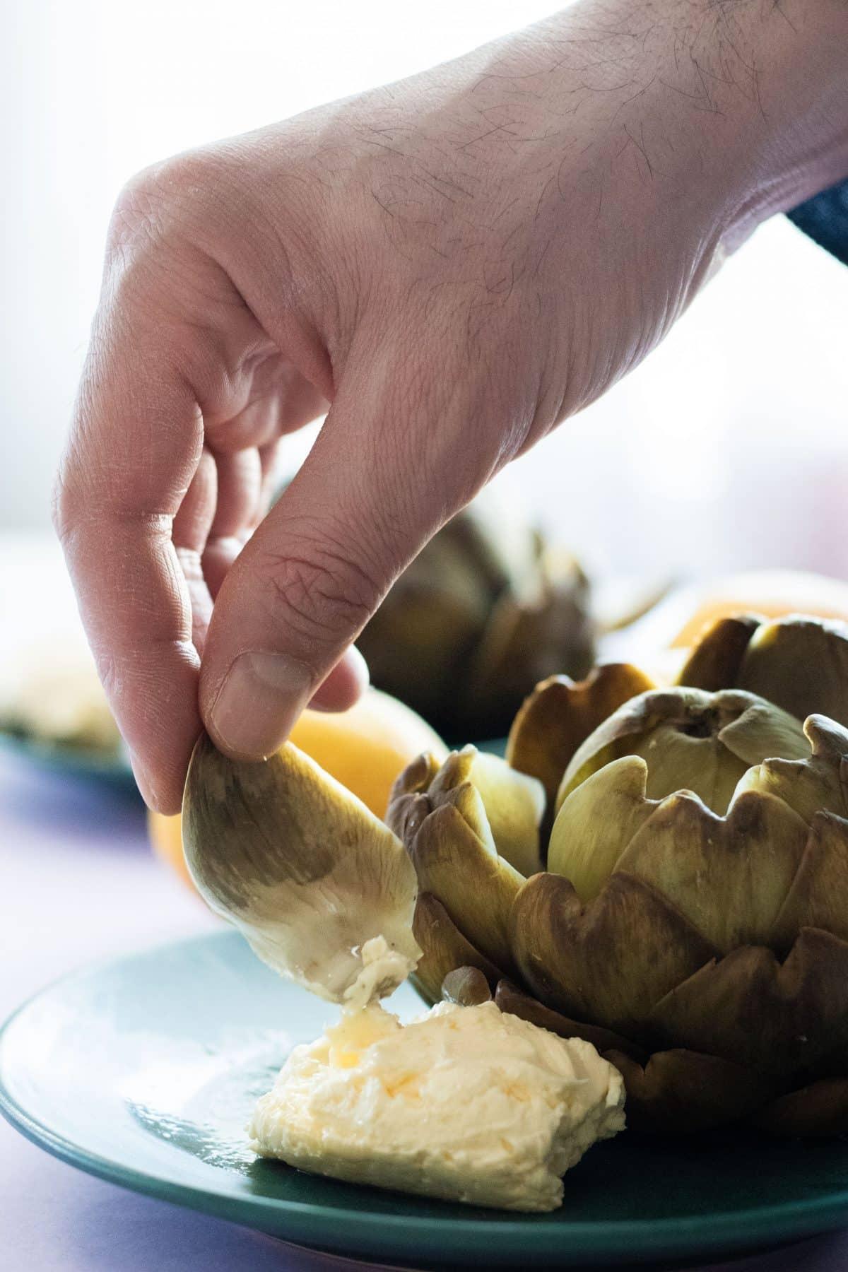 dipping an artichoke leaf in whipped lemon butter