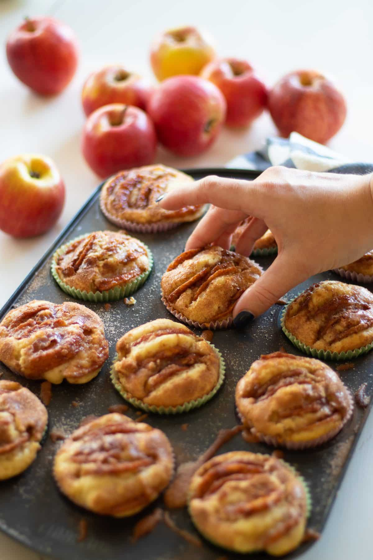 picking up an apple muffin from a muffin tin filled with apple muffins