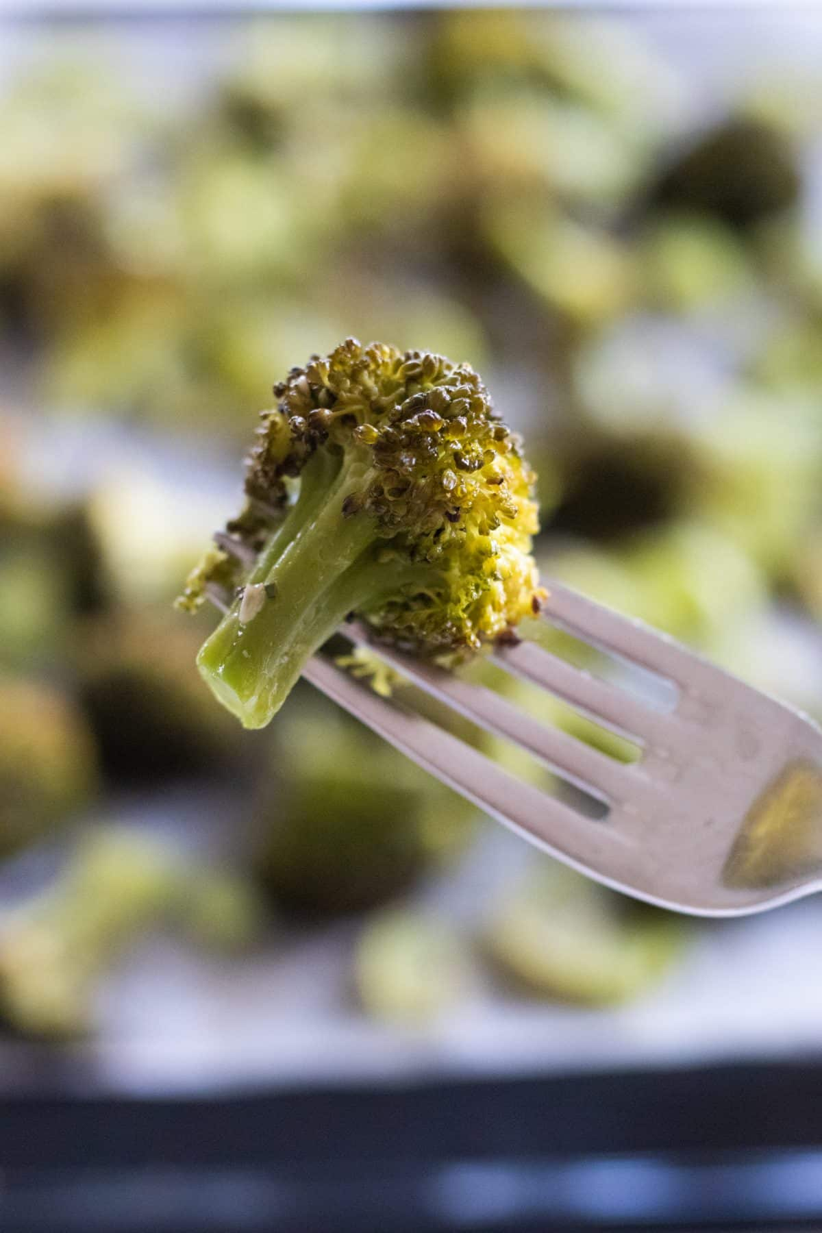 closeup of a piece of garlic roasted broccoli on a fork