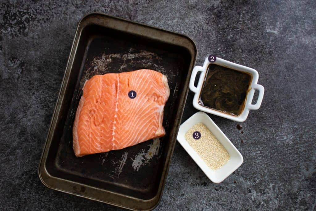 top view of ingredients needed to make baked teriyaki salmon