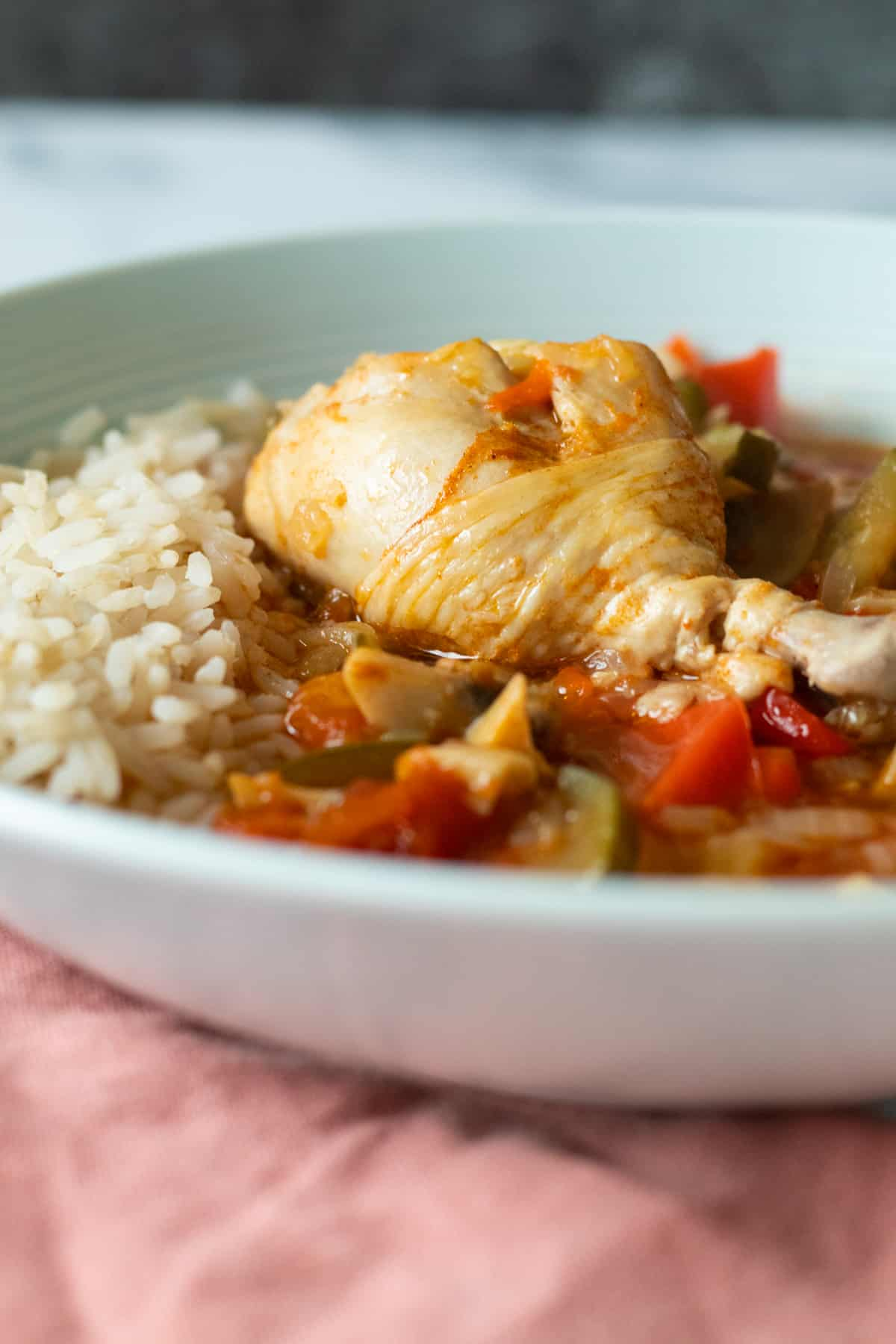 close up of a bowl of chicken stew with rice