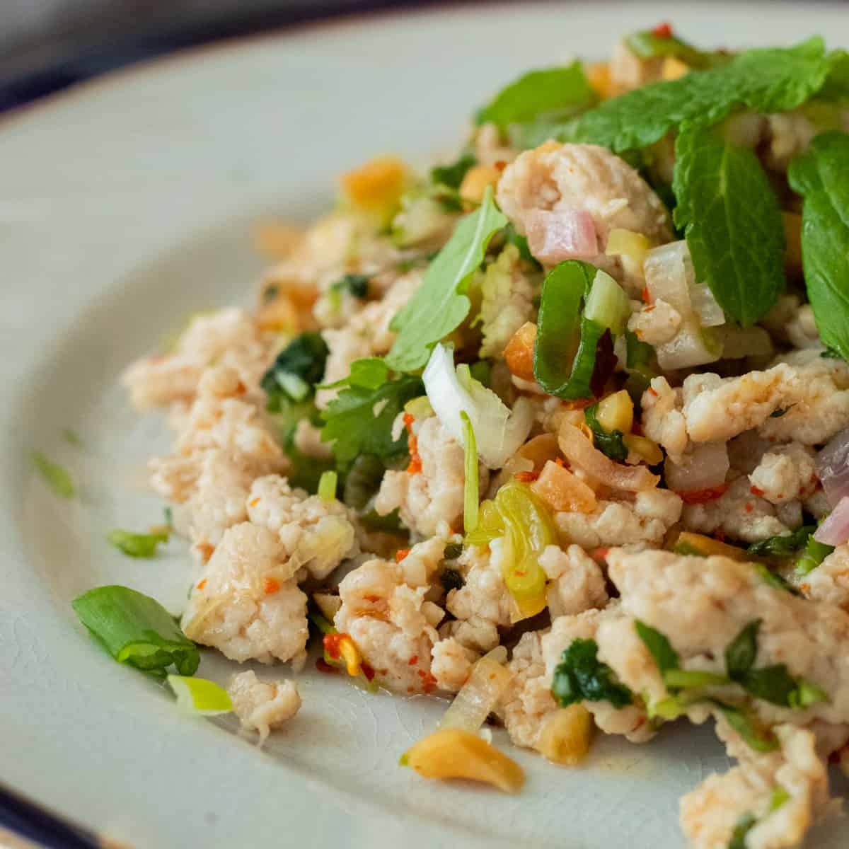 close-up of thai chicken salad on a plate decorated with mint leaves
