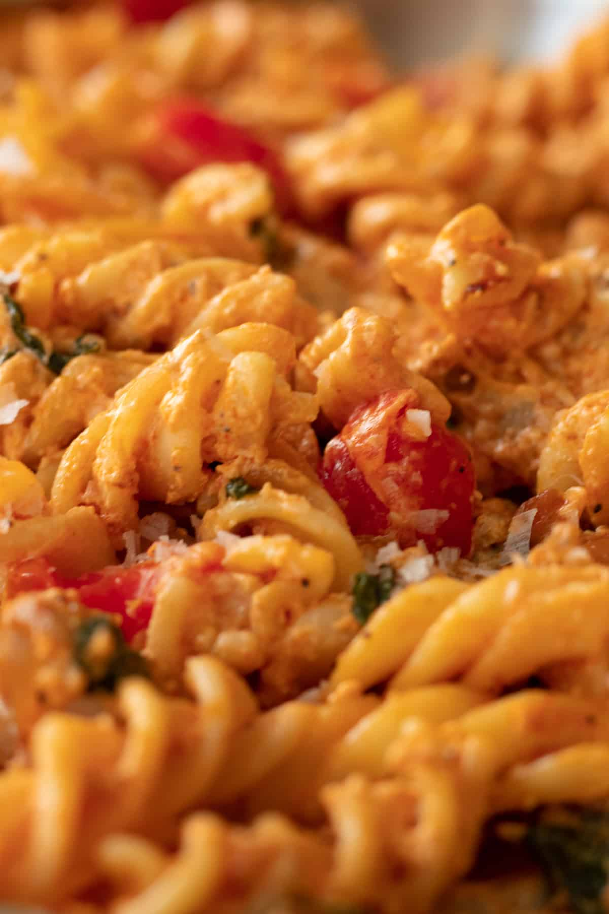 close up of feta cheese pasta with chicken