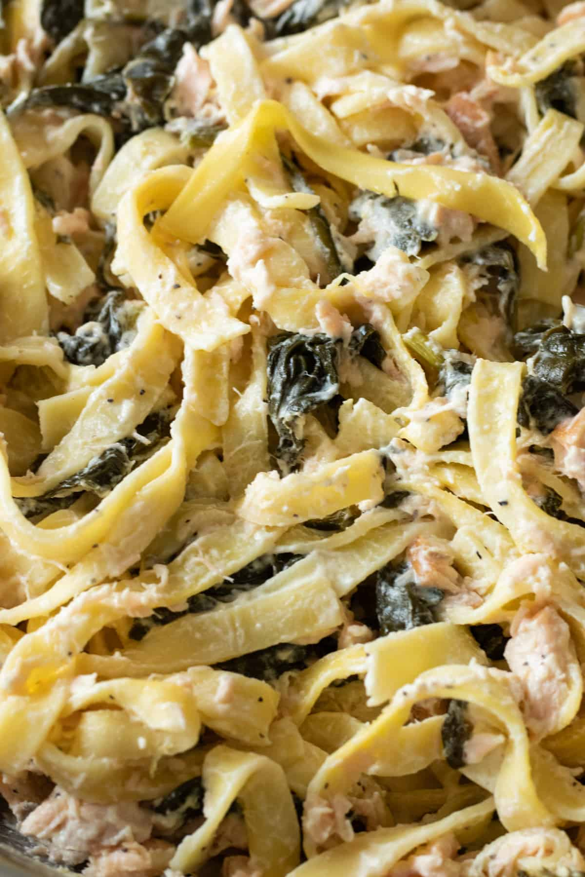 close up of salmon spinach pasta