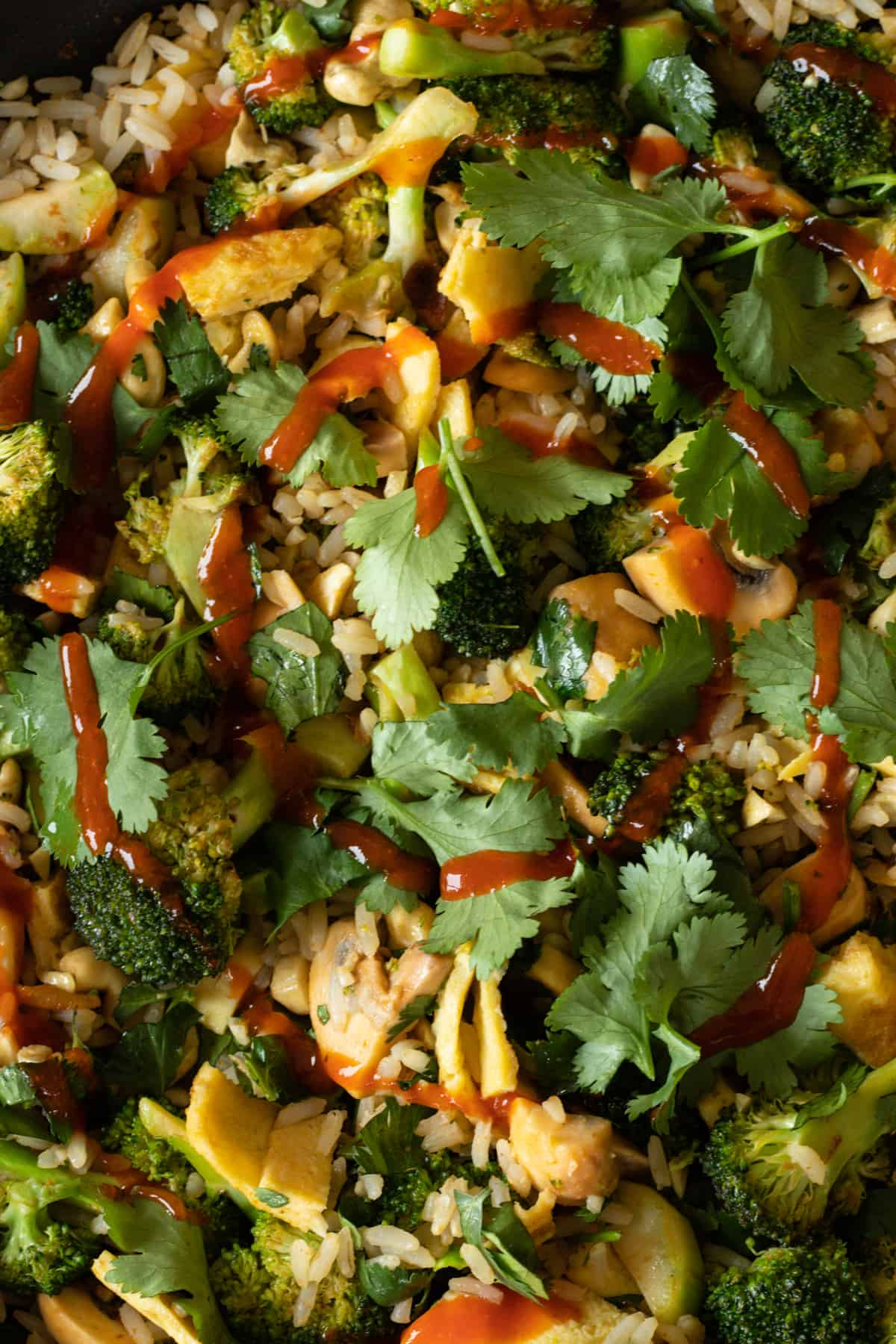 close up of thai curry fried rice